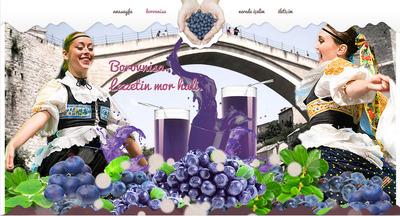 Borovnisa website4