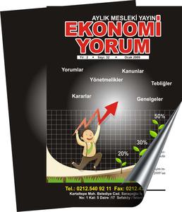Ekonomi dergi