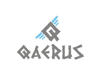 Qaerus003