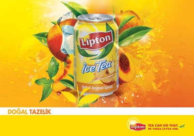 Lipton 800x500