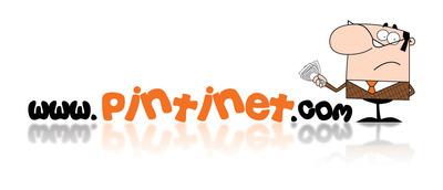 Pintinet logo