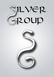 Silver group copy