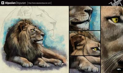Aslan2