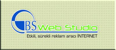 Bsweb logo