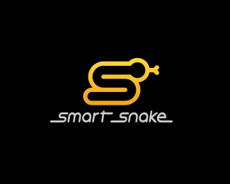 Smartsnake