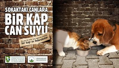Osmangazi hayvan su billboard 01