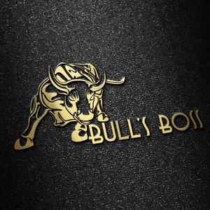 Bullsboss logo 2