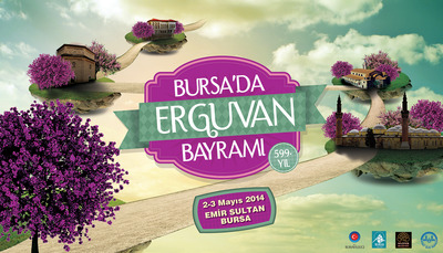 Erguvan billboard