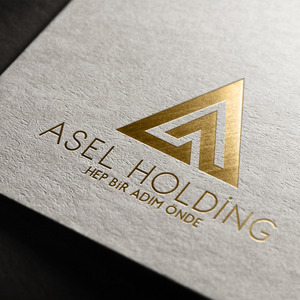 Asel holding