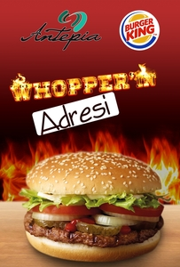 Burger clp calisma