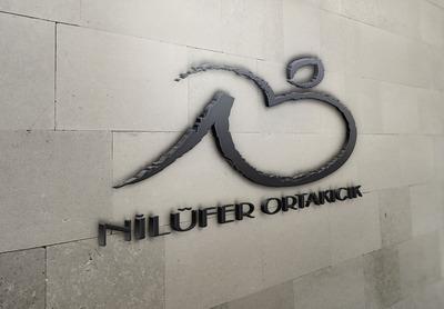 Nil wall logo mockup