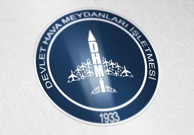 Logo dhmi2