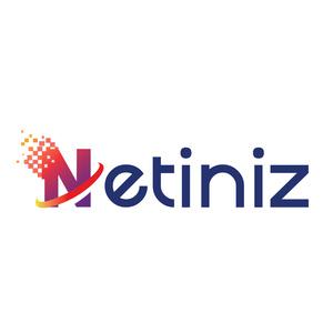 Netiniz logo